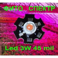 3Вт STAR Фіто світлодіод для росту рослин, з великим кристалом 45mil