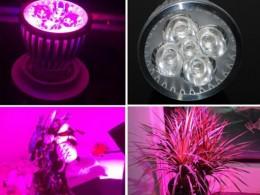 Фитоосвещение, лампы для растений