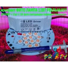 Комплект фито лампа 12Вт реальных