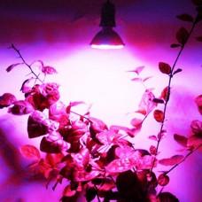 Светодиодная лампа для растений, фитолампа 60 led