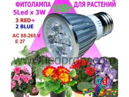 Фито лампы для роста растений